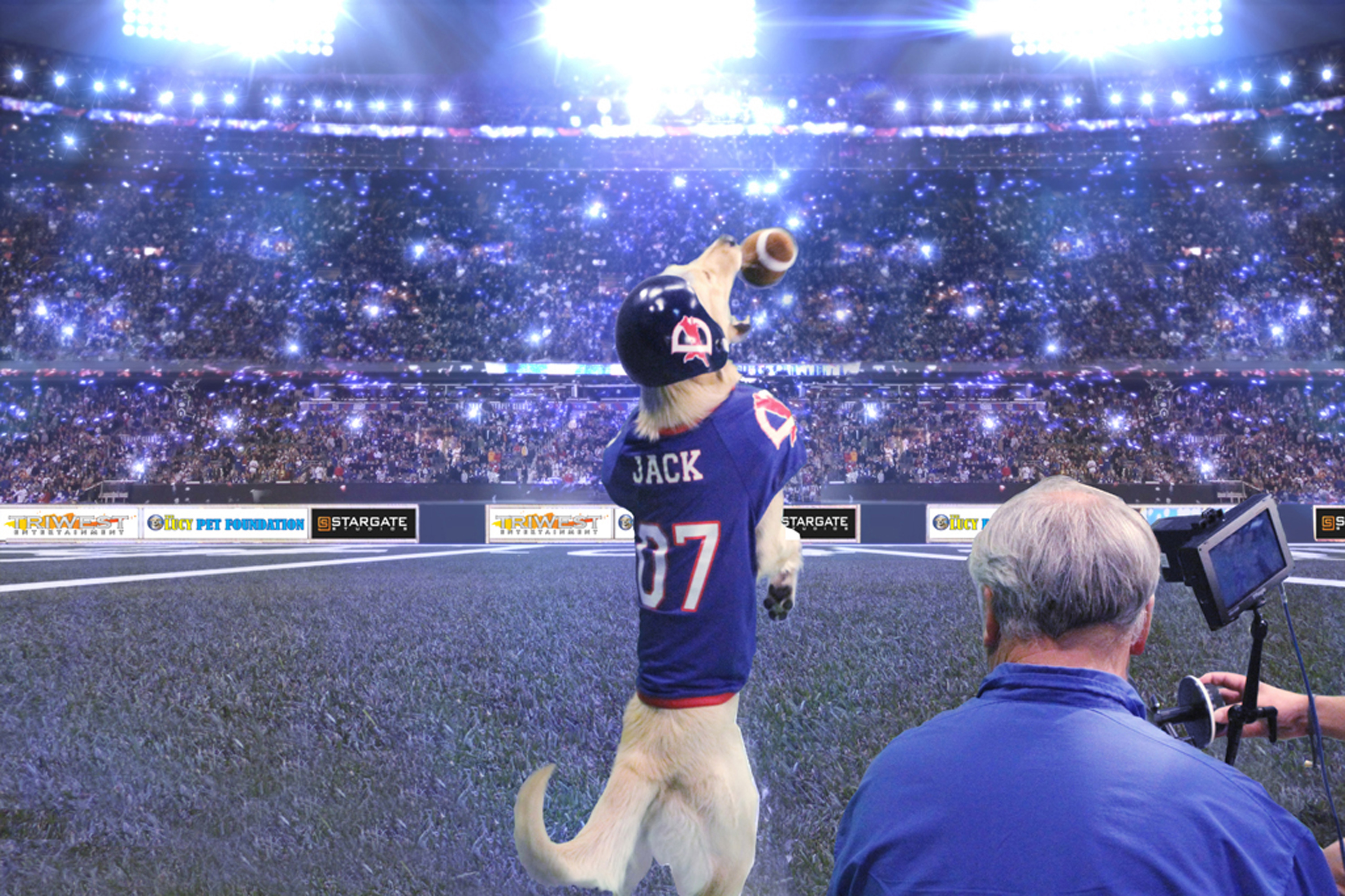 """In this image produced on Nov. 19, 2014, provided by the Lucy Foundation, cinematographer Sam Nicholson records quarterback Jack the dog in a scene in a fanciful Cats vs. Dogs football game scheduled to appear on Super Bowl Sunday, Feb. 1, 2015. It won't be part of the game broadcast but will be an alternative show dubbed the """"Kitten Bowl"""" on the Hallmark Channel, three hours before the Super Bowl game on NBC. (AP Photo/Lucy Foundation, Betsy Martin)"""