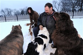Noreen and Rich Kohl can keep their Giant Breed Rescue business at their home in New Sewickley, Beaver County.