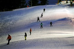 Skiers enjoy a night-time run last month at Allegheny County's Boyce Park.
