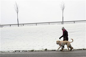 Carolyn Barber walks her dog Barrett around Highland Park Wednesday afternoon. After walking a dog outdoors in winter, it is recommended that their feet be wiped off or washed to keep them from licking and ingesting ice melt products.