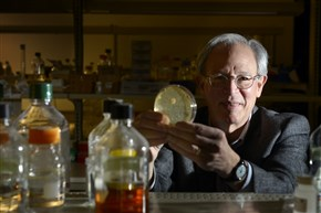 Jonathan W. Jarvik, a Carnegie Mellon University biochemist who also founded SpectraGenetics, holds a petri disc with a colony of cells used in his research to find a compound that boosts the newly discovered anti-aging protein, GDF11, to be used to reverse aging in pets.