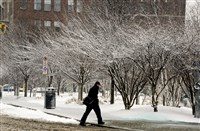 Today's early morning low of minus-3 degrees broke the record low for the day set back in 1901 at 2 degrees in Pittsburgh, according to the National Weather Service.