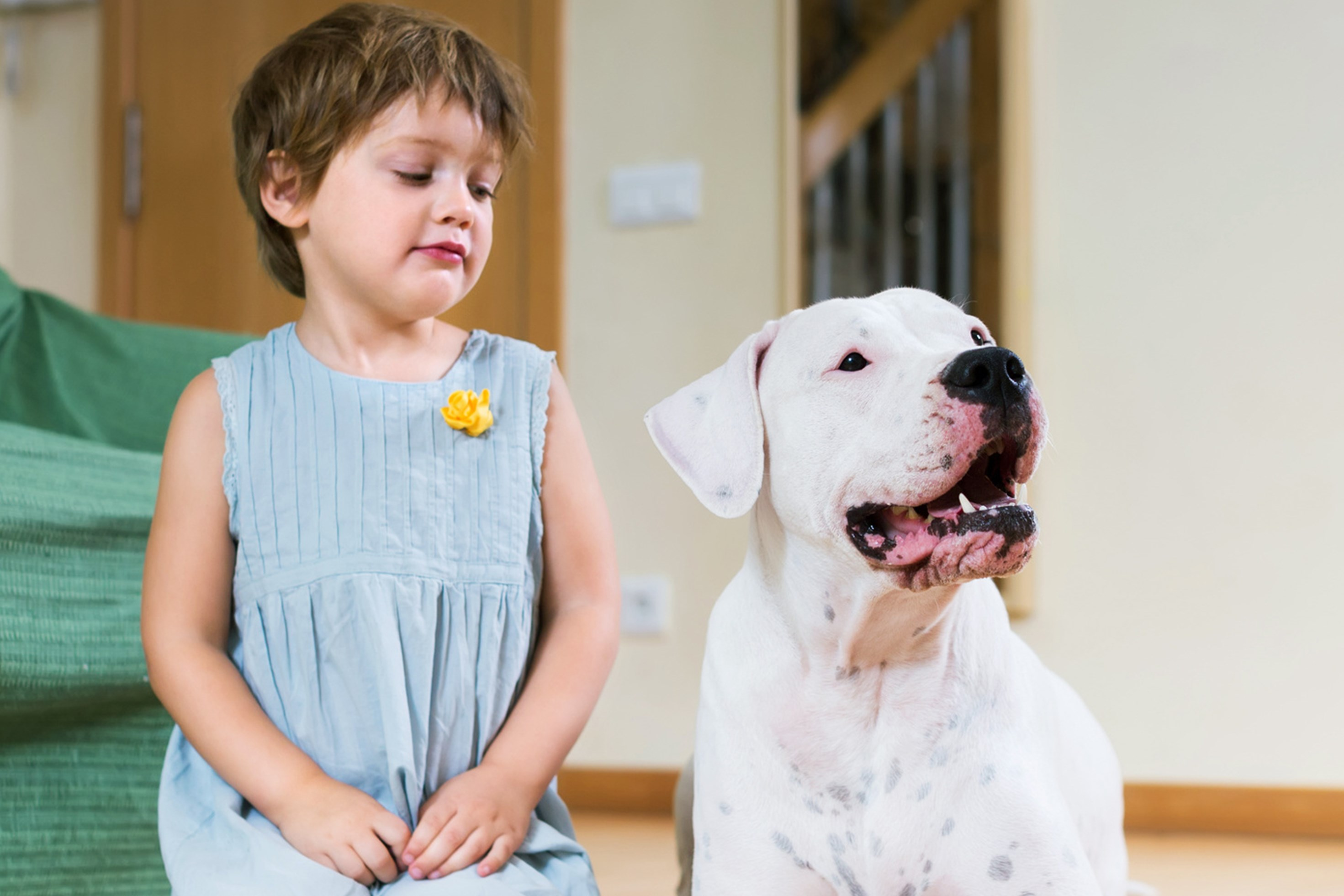 Capitalizing on kids' natural empathy with animals can help them overcome their fear of your pet.