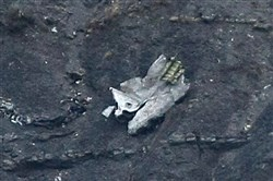 Debris of the crashed Germanwings passenger jet is scattered on the mountain side near Seyne les Alpes, French Alps.