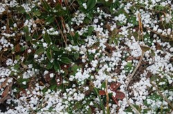 Graupel gathered on the ground in parts of the Pittsburgh region on Tuesday.