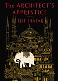 """The Architect's Apprentice"" by Elif Shafak."