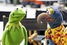 The Muppets, including Kermit and Gonzo, are returning to ABC for a new prime-time TV series.