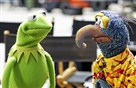 "The Muppets, including Kermit and Gonzo, are returning to ABC for a new prime-time TV series ""The Muppets."""