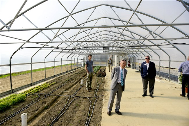 Peter Walker, Dean of Chatham University's Falk School of Sustainability, leads a tour of the hoophouse, where students grow a variety of vegetables year-round, on Eden Hall campus in Richland Township.