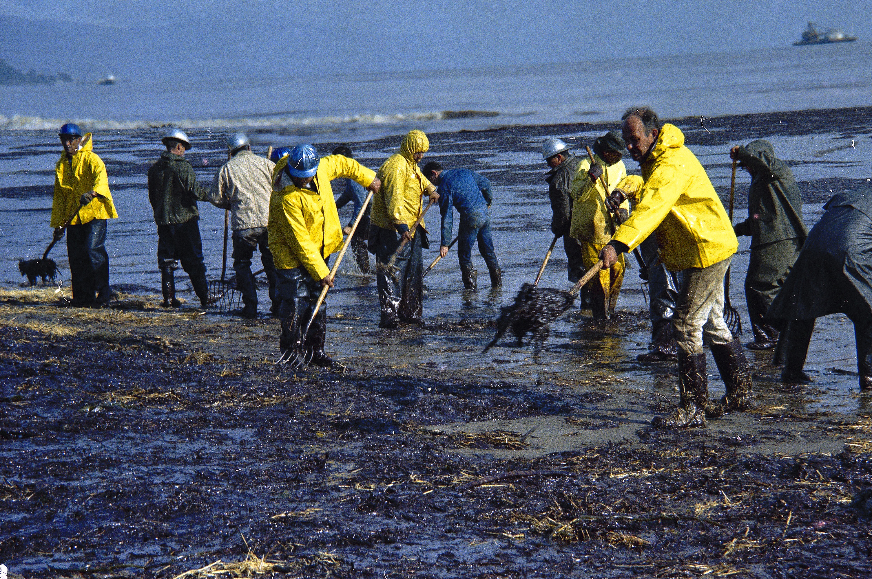 oil spill The 2010 gulf of mexico oil spill is a tragedy of enormous proportions that will  impact communities and be studied by scientists for many years use the.