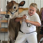 Emma Bowser, 10, holds back 700-pound Jersey cow Rapunzel, from entering the judging ring too early during a previous Big Butler Fair. Rapunzel, from Rocky Maple Farm in Slippery Rock, went on to win two blue ribbons. This year's fair opens Friday and runs through July 11.