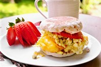 Mashed and Scrambled Breakfast Sandwich.