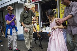 Veteran Tim Hornik, 35, undergoes guide dog training in Queens on Wednesday. Mr. Hornik and his guide dog, Black Jack, have been working together for nearly two weeks. Mr. Hornik's vision was damaged after he was shot in the face by a sniper in Iraq in 2004.