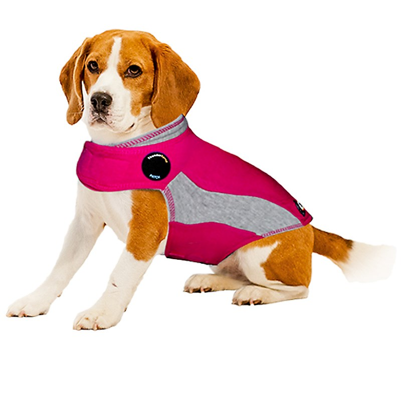 The ThunderShirt applies a gentle constant pressure that has a calming effect on dogs, according the company's website.