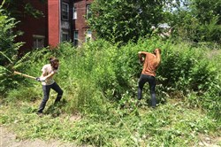 GTECH staffers Gavin White, left, and Lydia Kramer clear weeds in new Propel Northside charter school lot.