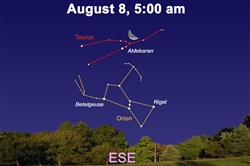 How the sky will this week, with the reappearance of the constellation Orion.