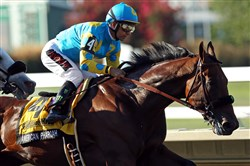 Victor Espinoza rides American Pharoah to another victory Sunday in the Haskell Invitational.