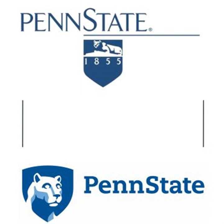 what is penn state application essay