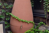 A rain barrel on a back patio in the South Side.