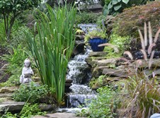 A waterfall cascades down rocks into a fish pond in Tamara Myers and Janice Irwin's garden at their home in Bethel Park.
