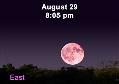 Stargazing for August 24, 2015