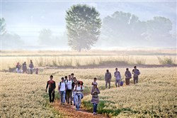 Migrants walk through a field Saturday to cross the border from Greece to Macedonia near the Greek village of Idomeni.