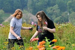 Riley Fuller, 15, right, calls attention to one of the flowers at Simmons Farm in McMurray while on an outing with her mother and her sister Lilly, 16, left.