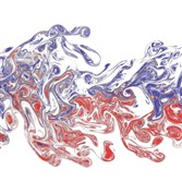 A laser-based experimental visualization of two interacting odor plumes (falsely colored in red and blue), transported from left to right in a turbulent flow. The spatial and temporal patterns in the plumes likely embed information about the distance and direction to the source of the odorant. One of the smell projects will research how animals behave in olfactory environments, and the mechanics of odor distribution.  Credit: