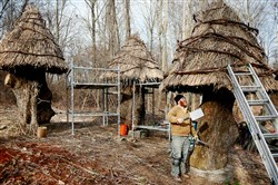 William Cahill of Cincinnati thatches a roof on one of three huts made from stumps of a 227-year-old white oak in the Bookworm Glen section of the Pittsburgh Botanic Garden in North Fayette and Collier.
