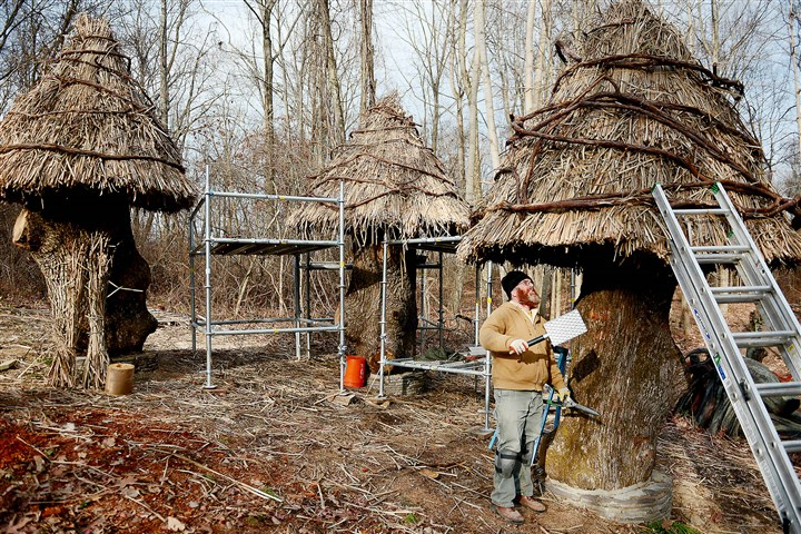 20151123MWHthatcherLocal03-5 William Cahill of Cincinnati thatches a roof on one of three huts made from stumps of a 227-year-old white oak in the Bookworm Glen section of the Pittsburgh Botanic Garden in North Fayette and Collier.