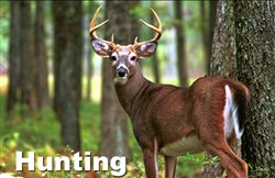 Deer hunting season opens Monday.