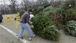 Jane Weigand of McCandless rolls her Christmas tree into the recycling pile at the North Park Pool.