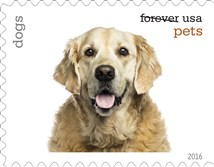 Dogs will be among the pets celebrated in an upcoming set of Forever stamps issued by the U.S. Postal Service.