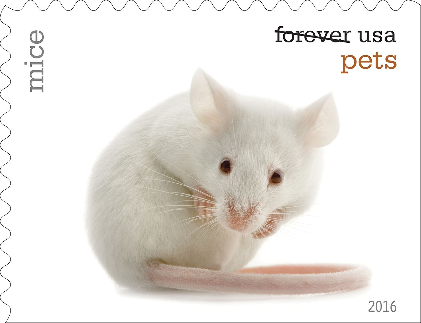 14-0_USPS16STA004o-4 Mice will be among the pets celebrated in an upcoming set of Forever stamps issued by the U.S. Postal Service.
