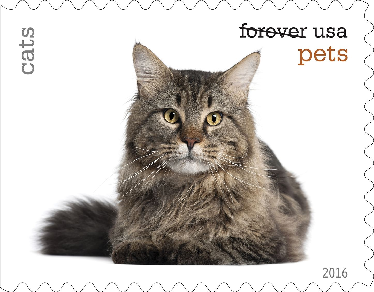 1-0_USPS16STA004b-1 Cats will be among the pets celebrated in an upcoming set of Forever stamps issued by the U.S. Postal Service.