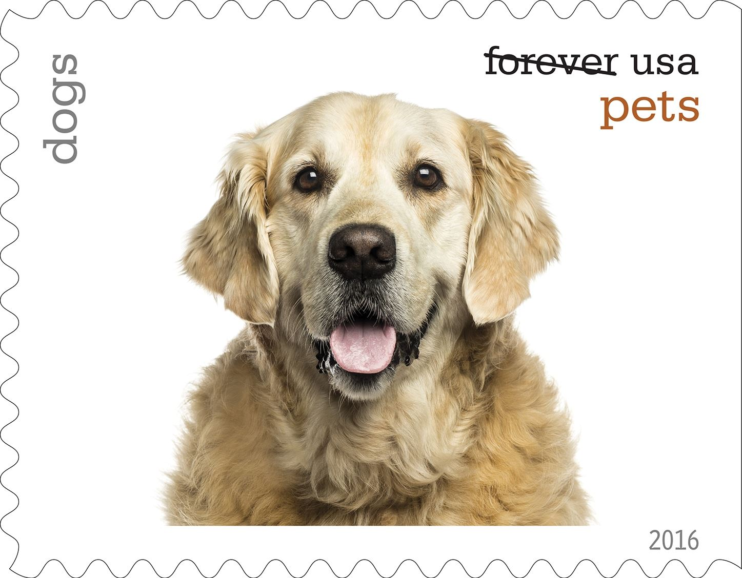 4-0_USPS16STA004e-13 Dogs will be among the pets celebrated in an upcoming set of Forever stamps issued by the U.S. Postal Service.