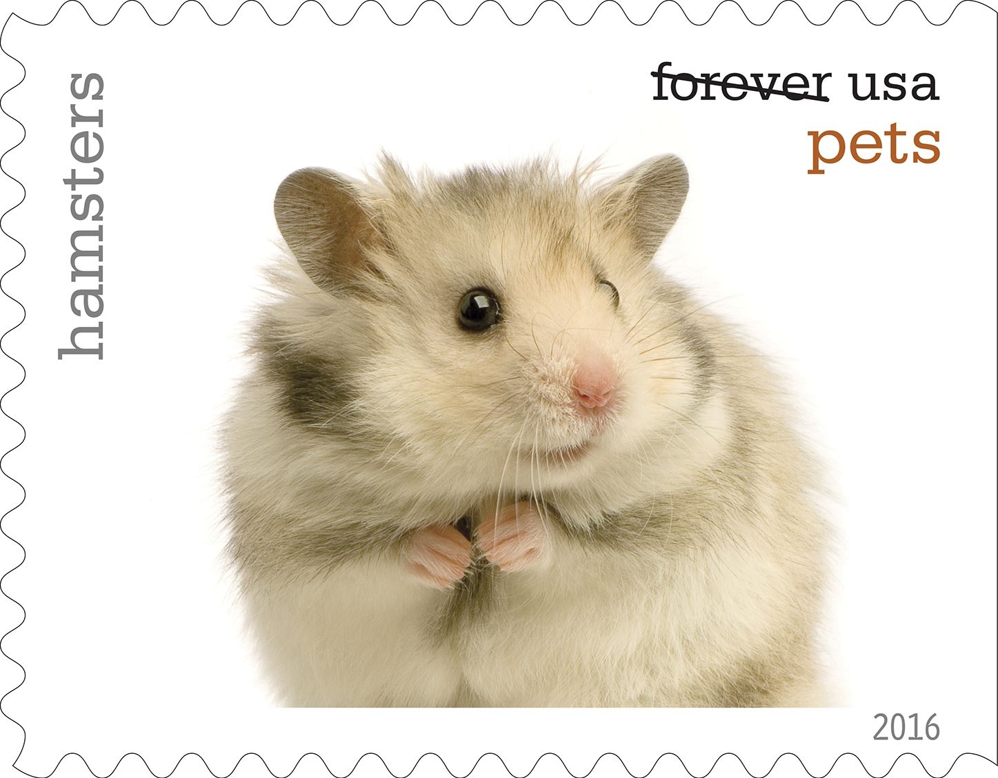 9-0_USPS16STA004j-18 Hamsters will be among the pets celebrated in an upcoming set of Forever stamps issued by the U.S. Postal Service.