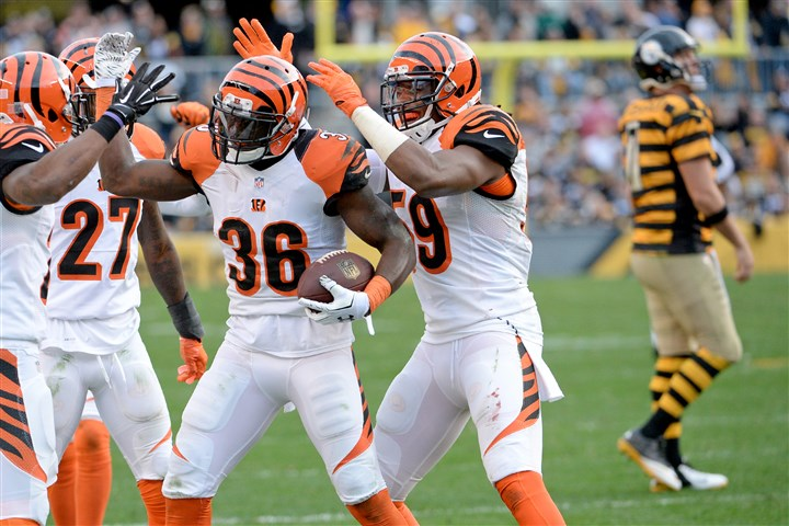 20151101mfsteelerssports19-1 Bengals DB Shawn Williams is congratulated after intercepting a pass by Steelers quarterback Ben Roethlisberger in the fourth quarter of a November game at Heinz Field.
