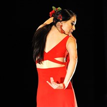 Maria Nunez of Alba Flamenca performs.
