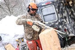 At the Ridgway Chainsaw Carvers Rendezvous, carvers set up netting around their area to catch wood chips and create a safety area for the public.