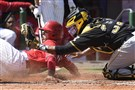 Pirates catcher Elias Diaz tags out the Phillies' Cesar Hernandez during a spring training game March 8.