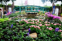 "An interpretation of Claude Monet's ""Water Lilies & Japanese Footbridge"" in the Spring Flower Show at Phipps Conservatory and Botanical Gardens."