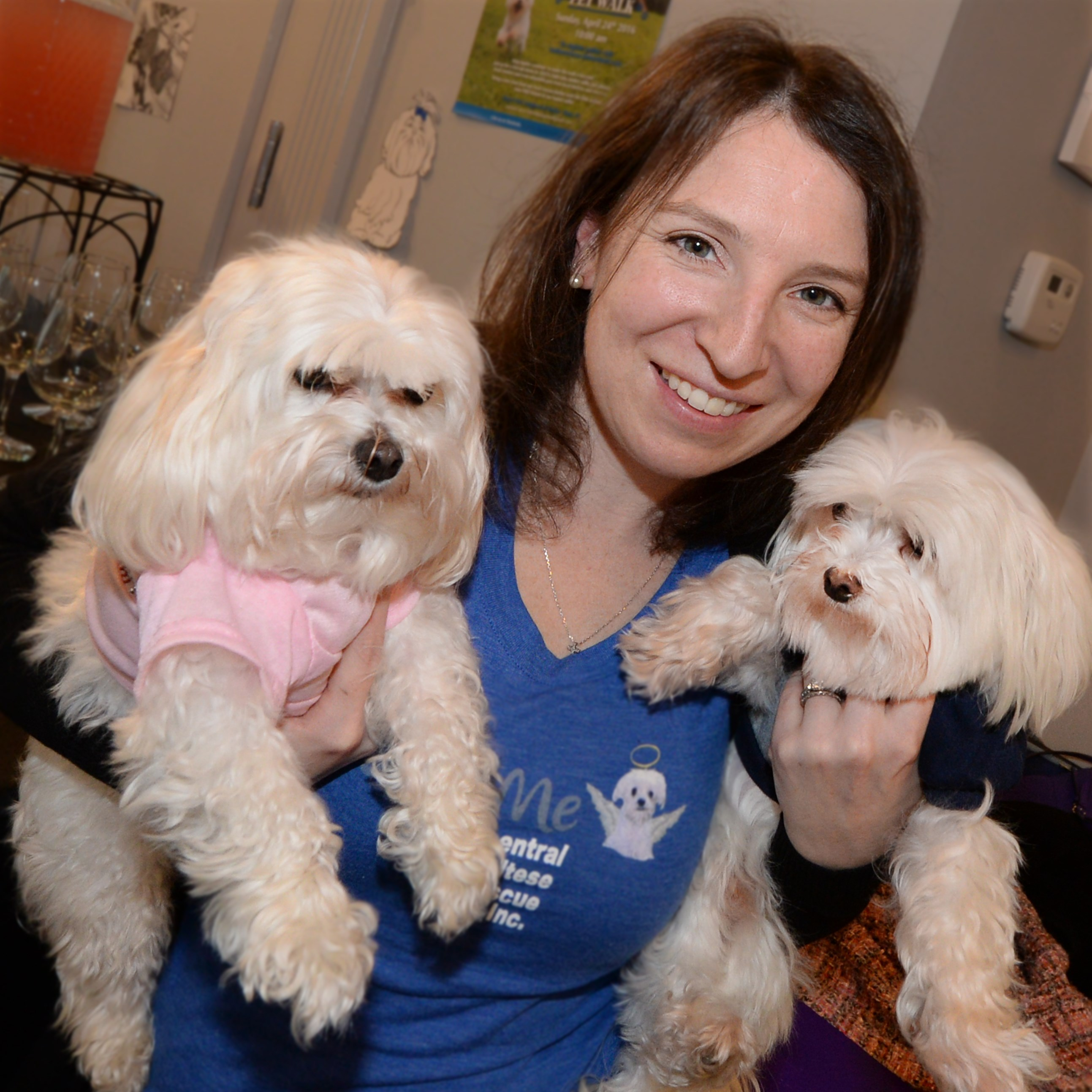 Nicole Orlando with her Maltese dogs Jupiter, right, and Penelope.