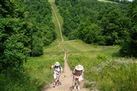 Hikers make their way along a trail in an Allegheny County.
