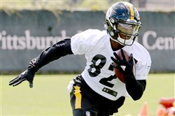 Steelers' seventh-round draft pick Demarcus Ayers is vying to become the team's next punt return specialist.