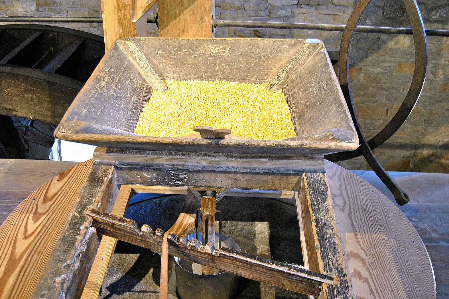 gristmill0518_grist_mill_grinding Dried corn is poured into a grain hopper located just above a spinning millstone at George Washington's reconstructed gristmill at Mount Vernon. Grain products made on-site include cornmeal, grits, pancake mix and flour.