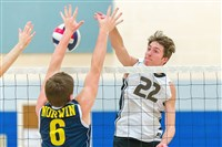 Eric Visgitis, a junior middle hitter for North Allegheny, has helped the Tigers to a No. 2 seed in the WPIAL Class AAA playoffs.