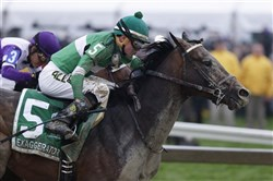 Exaggerator with Kent Desormeaux aboard moves past Nyquist with Mario Gutierrez during the 141st Preakness Stakes horse race at Pimlico Race Course, Saturday, May 21, 2016, in Baltimore. Exaggerator won the race.