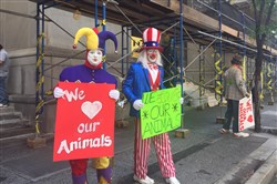 "From left: Ron ""Jingles"" Wassel , of Creighton, Pa., and  Jeff ""Kit Kat"" Cox, of Eighty-Four stand in front of the City-County Building on Tuesday against legislation that prohibits performances in the city by exotic animals."