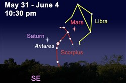 Astronomical highlights for the week of May 31; illus­­tration prepared by Amy Jill Pazur, Buhl Planetarium & Observatory.